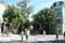 Pedestrial Shopping Street Aleksandrova