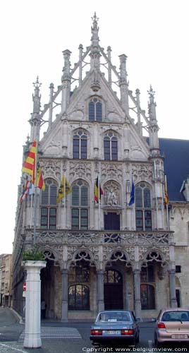 Palace of the Big Councel MECHELEN picture