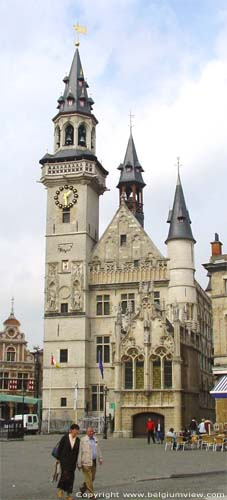 Town hall and belfry AALST picture