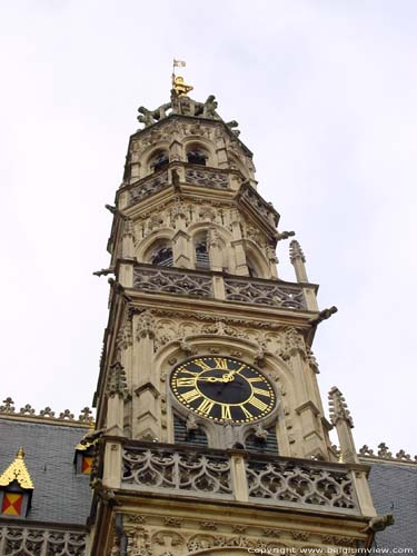 Town hall OUDENAARDE picture