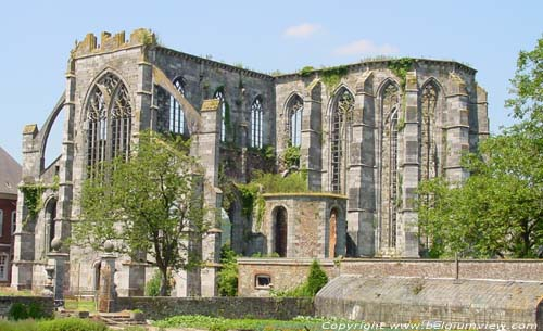 Ruins of Aulne's abbey (in Gozee) THUIN picture