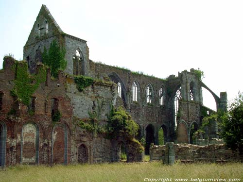 Ruins of Aulne's abbey LEERNES / FONTAINE-L'EVEQUE picture