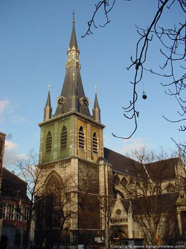 Saint-Paul's cathedral LIEGE 1 / LIEGE picture