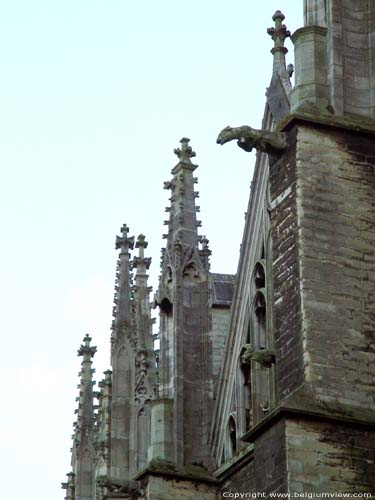 Cathedral Saint-Rombouts' cathedral MECHELEN picture