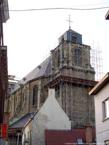 Saint Alexius' and Saint Catharina's church MECHELEN picture
