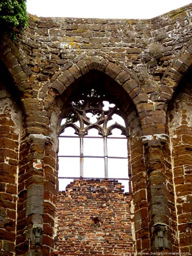 Ruins of the Saint-John's church DIEST picture