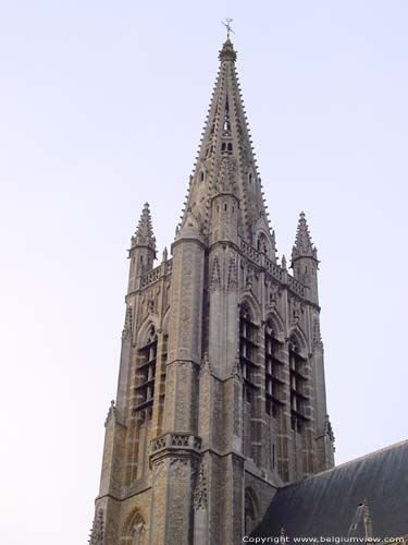 Saint-Martin's and Saint-Nicolas' church (former cathedral) IEPER picture