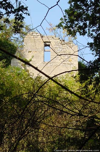 Ruins of the Kolmont castle (in Overrepen) TONGEREN picture