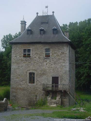 Tower of the Dime - Farm of the tower LOUVEIGNE / SPRIMONT picture