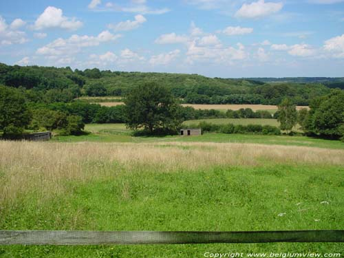 Landschap HOLSBEEK foto