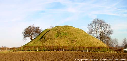 Roman Tumulus (2th century) TONGEREN picture