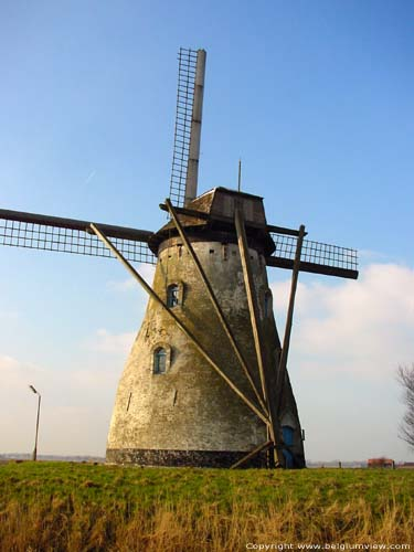 Mill St.Charles VEURNE picture
