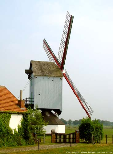 Moulin de Chemin Haut (Noorderwijk) HERENTALS photo