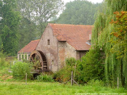 Moulin de Leveren (Neeroeteren) MAASEIK photo