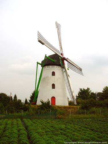 Moulin de Keijers KINROOI photo