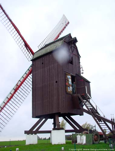 Poolmountainmill TIELT picture