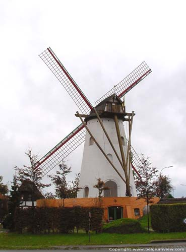Rysselende Mill PITTEM picture