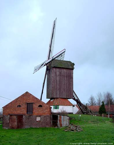 Pietendries mill KNESSELARE picture