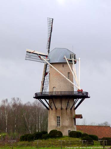 Moulin du Repos Rare ZANDHOVEN photo