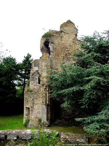 Ruins of Saint-Laurence Tower or Pideon's Tower NIEUWPOORT picture