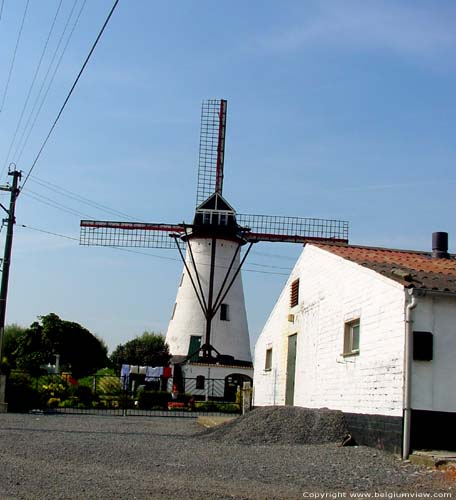 Artemeers Mill (between Poeke and Kanegem) AALTER picture