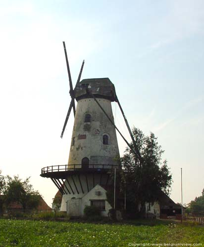 Ladies' Mill (in Kanegem) TIELT picture
