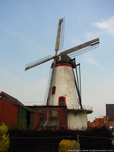 Moulin Knok RUISELEDE photo