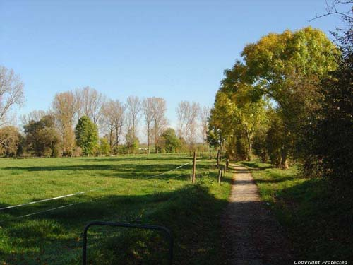 Chemin de Promenade OORBEEK / TIRLEMONT photo