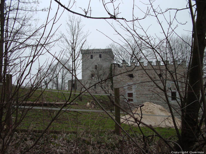 Alsemberg Castle (in Moresnet) PLOMBIERES picture