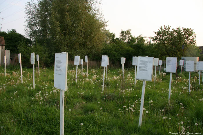 Field full of Poems (in Doel) KIELDRECHT / BEVEREN picture
