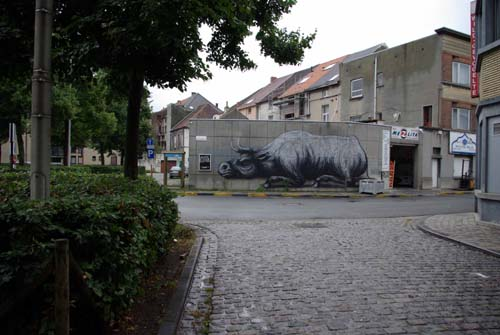 Graffiti of cattle GHENT picture