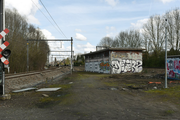 Rail Way JETTE picture