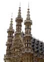 Townhall  LEUVEN picture: