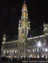 City hall BRUSSELS-CITY / BRUSSELS picture: