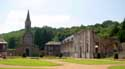 Ruins of Aulne's abbey LEERNES / FONTAINE-L'EVEQUE picture: