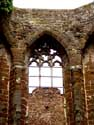 Ruins of the Saint-John's church DIEST picture: