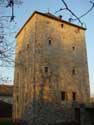Old Tower NANDRIN picture: