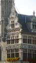 Newerck IEPER picture: