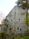 Ruins of Poilvache (in Evrehailles) YVOIR picture: