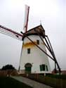 Moulin Blanc de Roxem OUDENBURG photo: