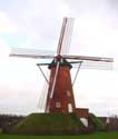 Old Windmill RANST picture: