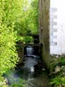 Old Corn Watermill WALSHOUTEM / LANDEN picture: