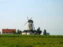 Ladies' Mill (in Kanegem) TIELT picture: