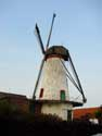 Knok Mill RUISELEDE picture: