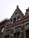 Den Roosenboom ANTWERP 1 / ANTWERP picture: