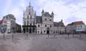 City square - Large Market MECHELEN picture: