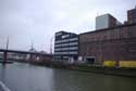 The New Mills GHENT picture: